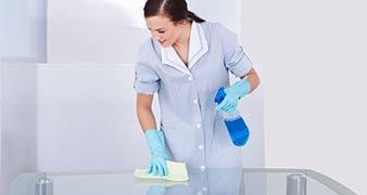 Golders Green rug cleaner rental