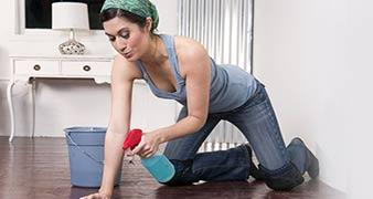 Waterloo rug cleaner rental