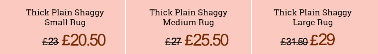 Our Prices for Rug Cleaning in North Sheen Start From